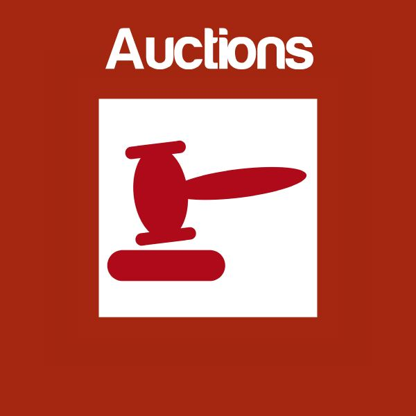 Auctions Icon