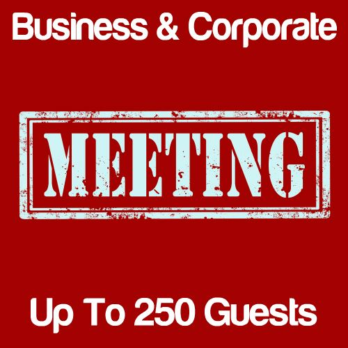 Business Meeting Up to 250 Guests Icon