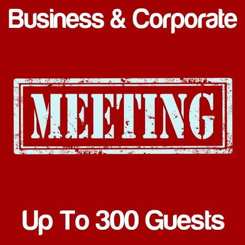 Business Meeting Up to 300 Guests Icon