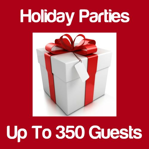 Holiday Party Up to 350 Guests Icon